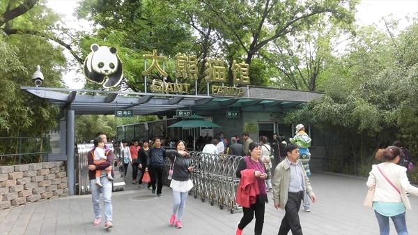 china201505 (129)_s.JPG