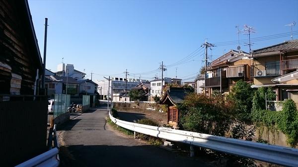 kyoto20151029ff (1)_s.JPG