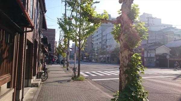 kyoto20151130 (1)_s.JPG