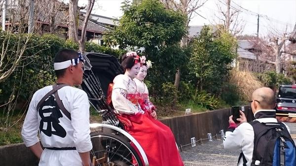 kyoto20160330 (28)_r.JPG